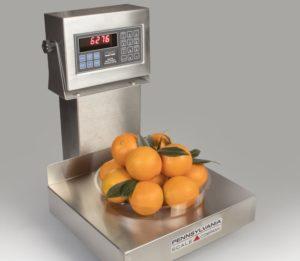 Penn6200-Series-Bench-Scale